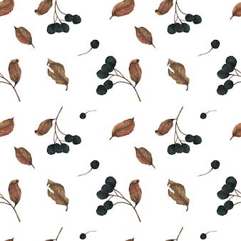 冬のパターンの乾燥果実と葉