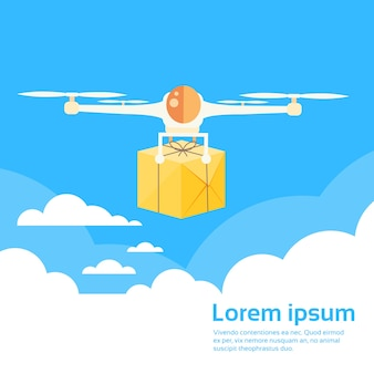 Drone flying delivery air package