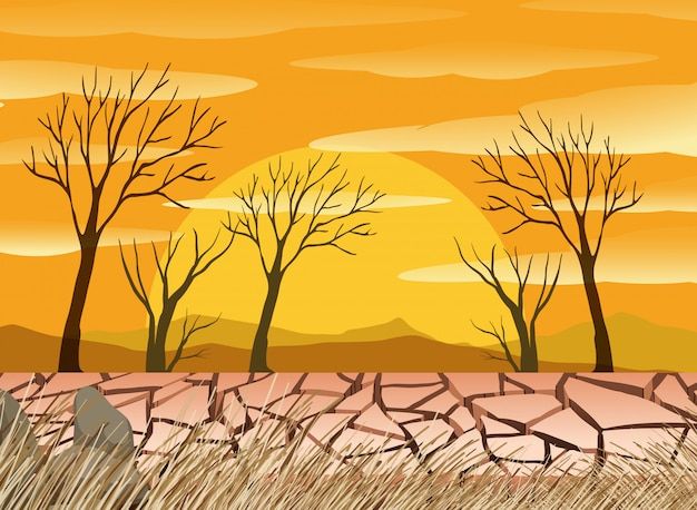 A drought desert scence