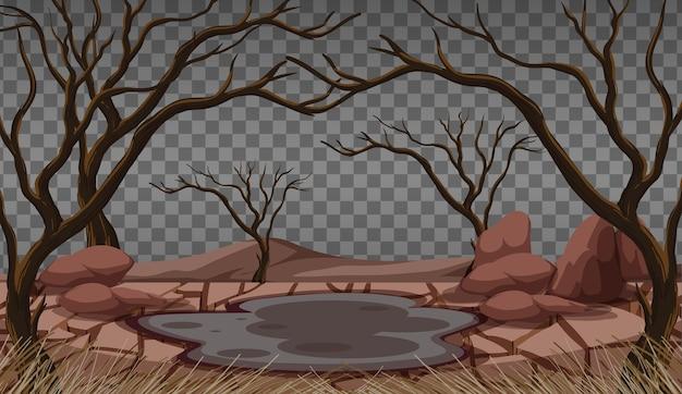Сухая растрескавшаяся земля на прозрачной