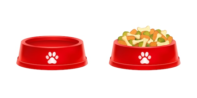 Dry dog food in bowl, empty cat plate