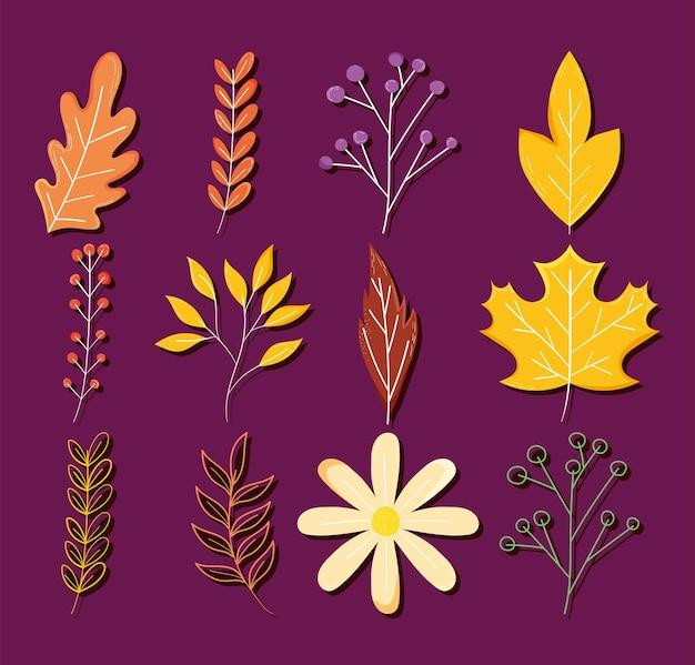 마른 잎과 꽃