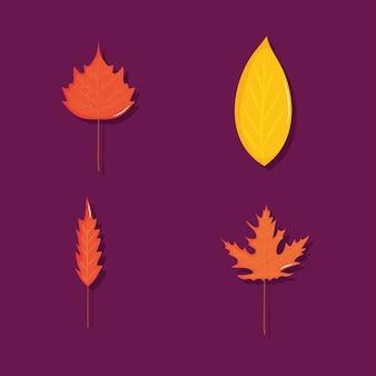 Набор иконок сухих листьев на фиолетовом фоне, красочный дизайн