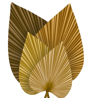 Сухие пальмовые листья