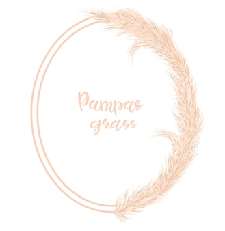 Dry pampas grass frame. decor of invitations, postcards in the boho style. vector illustration.