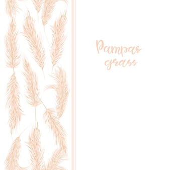 Граница сухой травы пампасов безшовная. декор в стиле бохо. векторная иллюстрация рисованной.