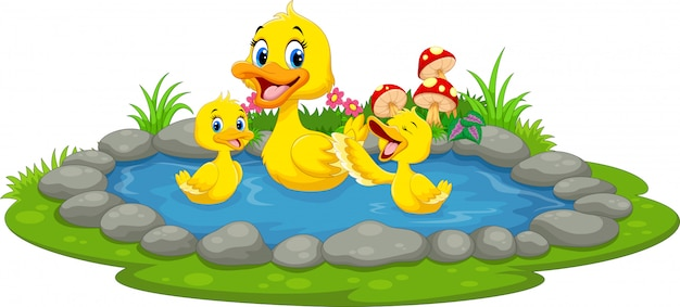 Утка и утята плавают в пруду
