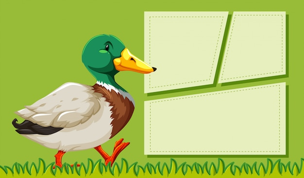 A duck on blank note frames