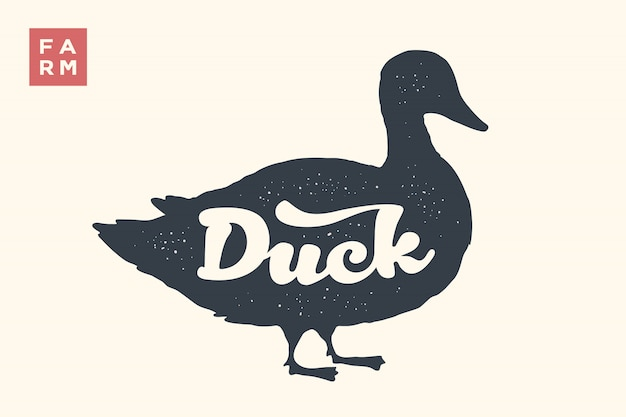 Duck. lettering, typography. animal silhoutte duck and lettering duck. creative graphic  for butcher shop, farmer market. vintage poster for meat related theme.  illustration