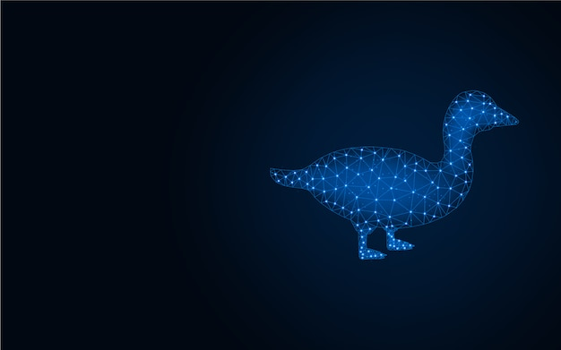 Duck low poly blue background