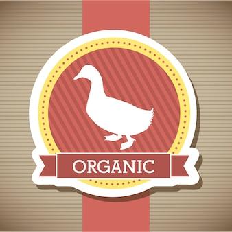 Duck meat over beige background vector illustration