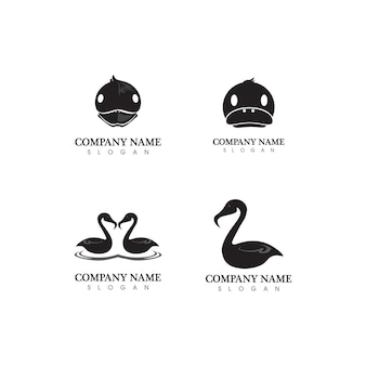 Duck and swan logo animal and birds icon and illustration logo design