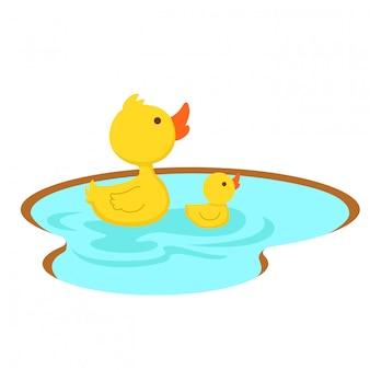 연못, 그림에서 수영하는 오리.