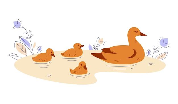 Утка с утятами в воде. векторная иллюстрация в плоском мультяшном стиле.