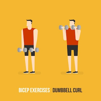 Dumbbell curl demostration