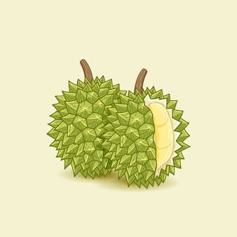 Durian food illustration