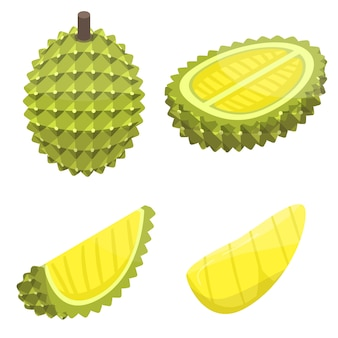 Durian icons set, isometric style