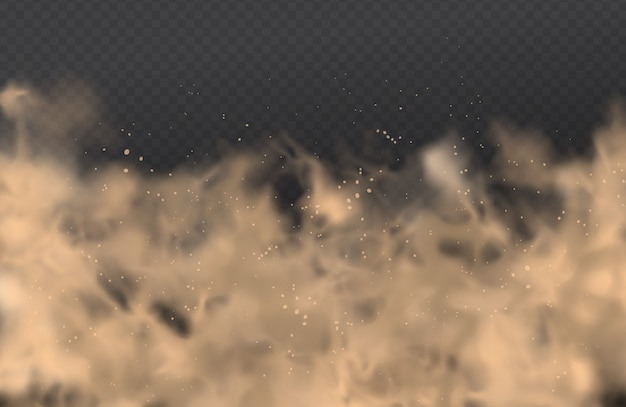 Dust, cloud of sand, powder spray, smog on transparent background. realistic