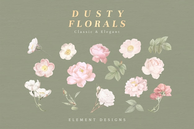 Dusty floral collection