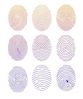 白い背景のラインeの色のグラデーションで異なる形状の指紋のイラストセット。