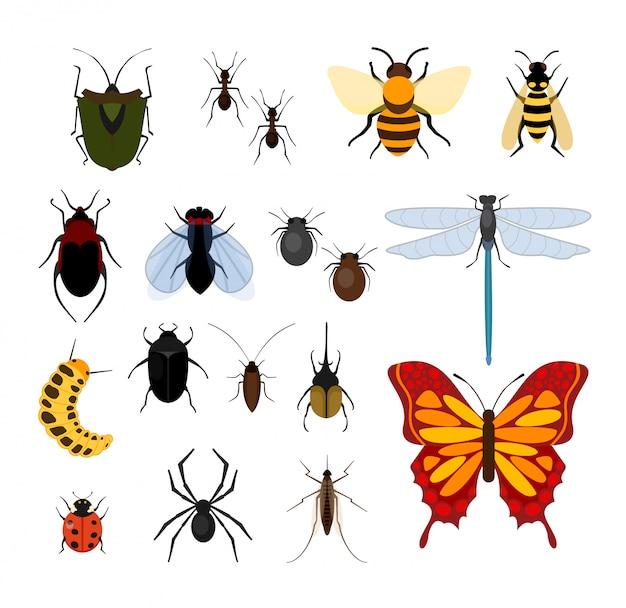 Eアイコンで昆虫の種類のイラストセット。蜂、ハエ、トンボ、クモ、ダニ、蚊、その他の人気のある昆虫コレクション白い背景の上。