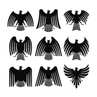 Eagle coat vector