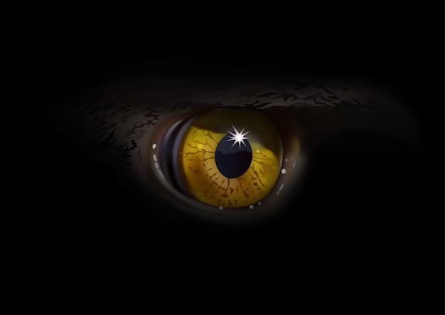 Орлиный глаз макро