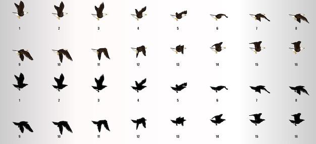 Вектор последовательности анимации цикла полета орла