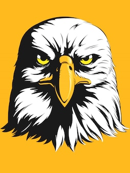 Eagle head   - front view cartoon