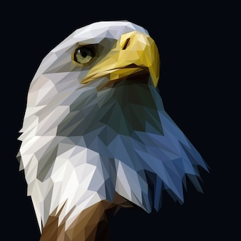 Eagle polygonal illustration