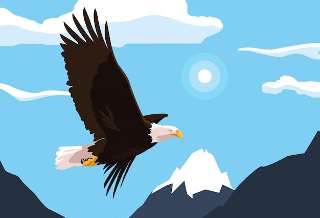 風景を飛んでいる白頭eagle鳥