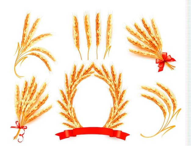 小麦の穂。
