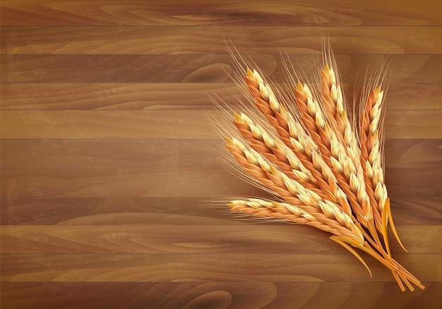 Ears of wheat.  illustration