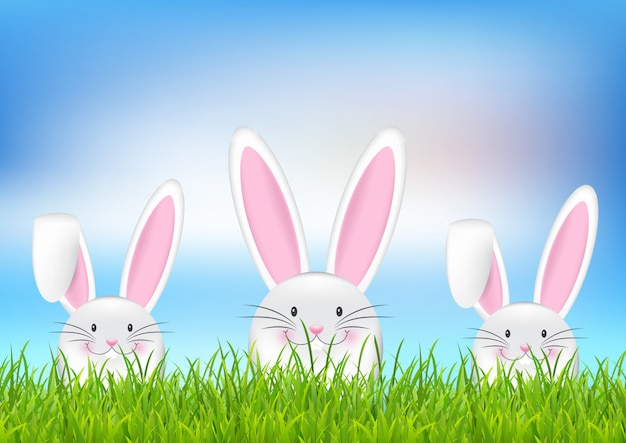 부활절 토끼 배경