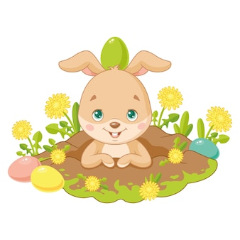 Easter bunny looking from a hole on white background