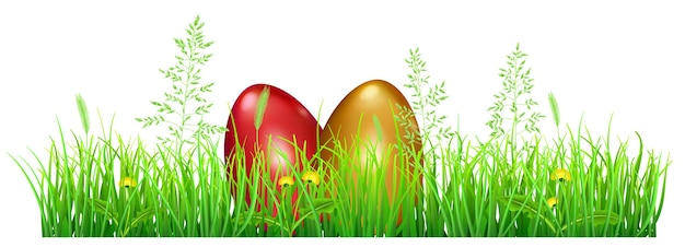 Easter eggs in green grass with dandelions and spikelets on white
