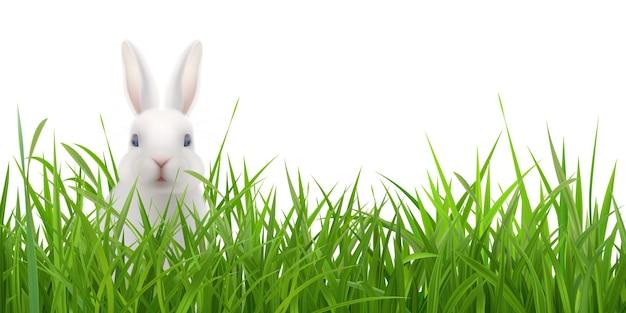 緑の草に座っている白いウサギとイースターの風景