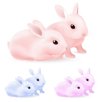 イースターのウサギ