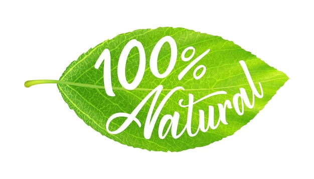 에코 아이콘 또는 레이블입니다. 100% 천연 비문이 있는 현실적인 녹색 잎