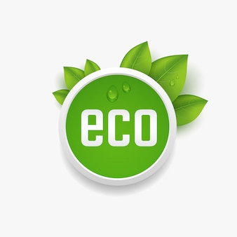 Eco label, button with green leaves and dewdrop