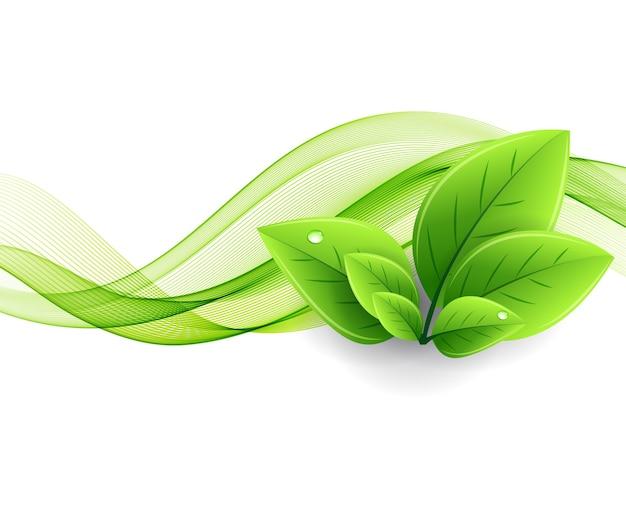 에코 나뭇잎과 녹색 물결. 추상 생태 배경
