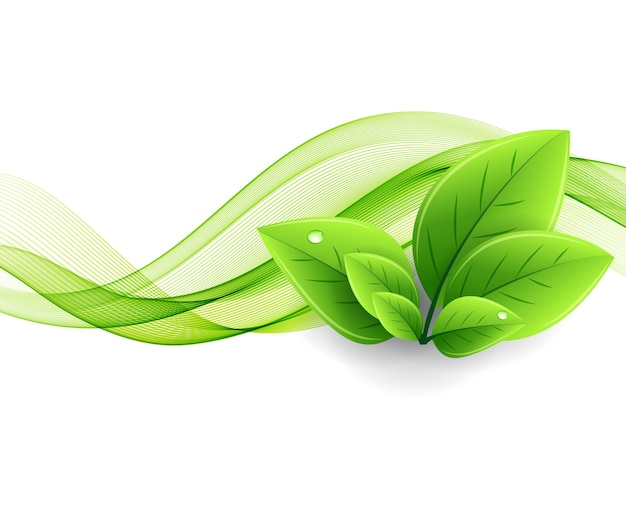 Eco leaves and green wave. abstract ecology background