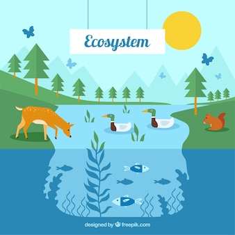 Eco system concept with animals