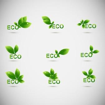 Листья eco логотипы