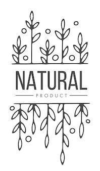 Ecological and eco friendly, organic natural product, emblem or label for package and advertisement. isolated badge or sticker with text and aromatic foliage and leaves. vector in flat style