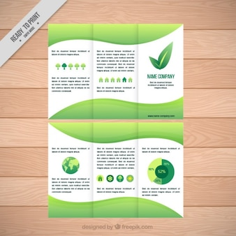 Ecological trifold template with infographic elements