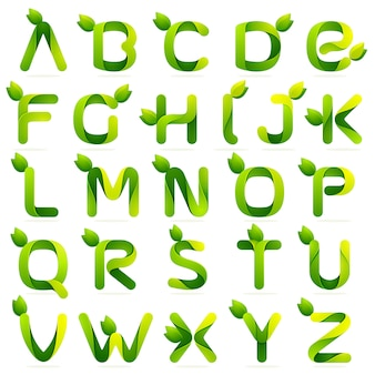Ecology english alphabet letters with leaves set.