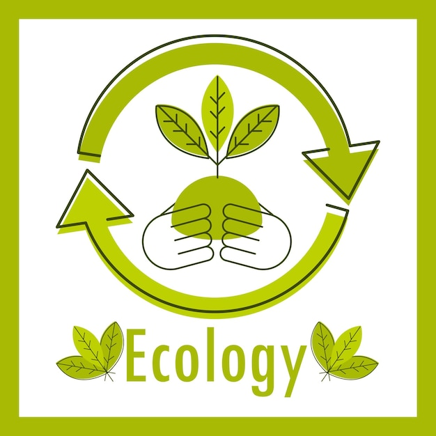 Ecology and environment card