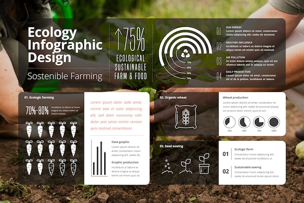 写真付きエコロジーインフォグラフィック