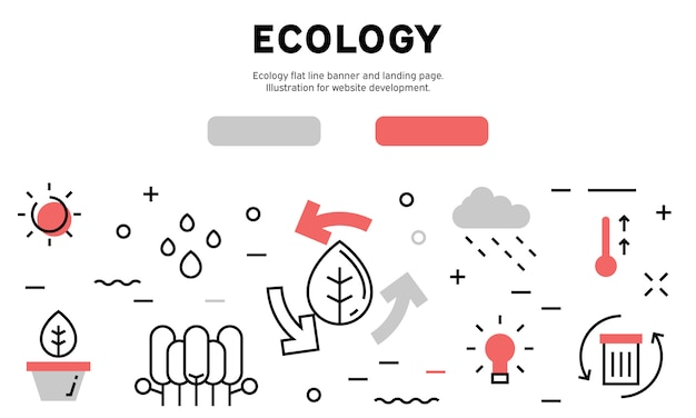 Ecoogy веб инфографики